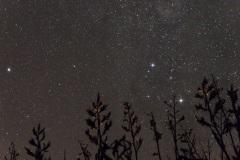 Stars of Centaurus.