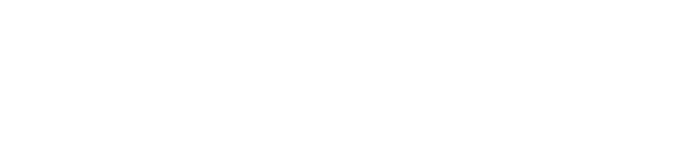 Auckland Astronomical Society Inc